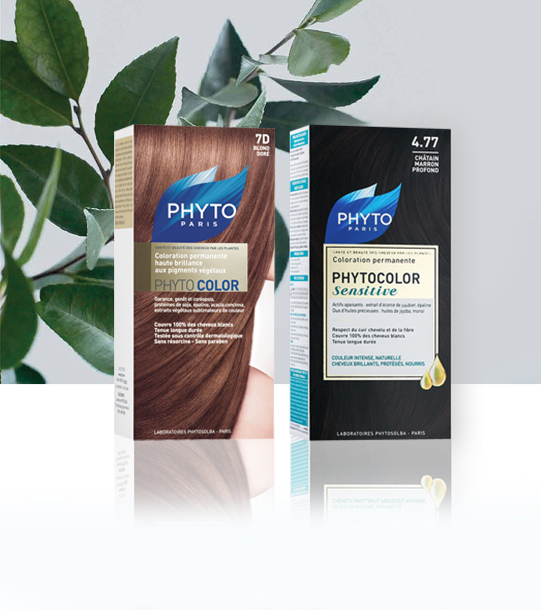 Phyto Hair